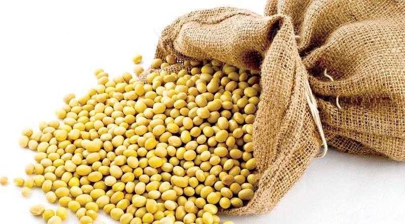 Giò chay làm từ đậu tương là món ăn ưa thích của nhiều người